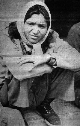 Phoolan Devi, 1983 (surrender)