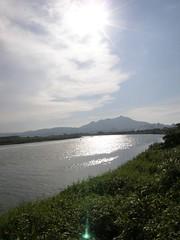 24.關渡平原的稻田與觀音山 (2)
