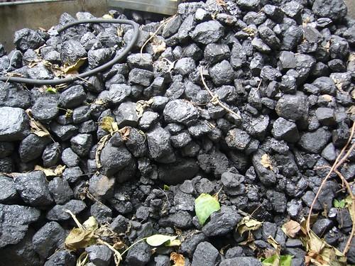 Pile of Coal for Christmas