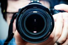 Lens (160/365)