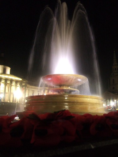 Poppies & Fountain