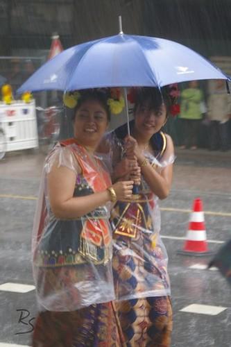 Parade der Kulturen (2007) 014.jpg