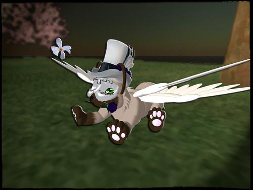 maskedcat001