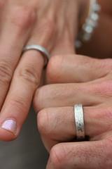 Josh & Dani's rings