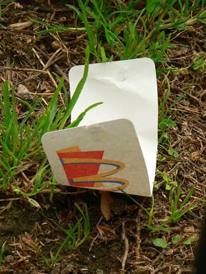 Litter - McDonalds