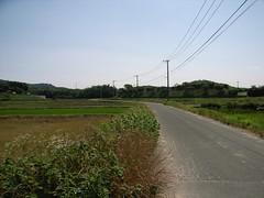 My training road