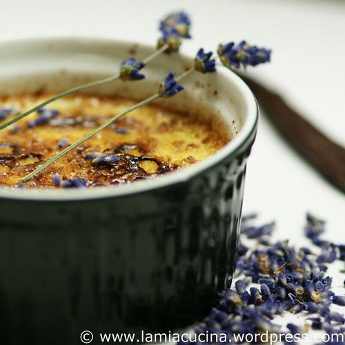 Crème brulée mit Lavendel 0_2010 06 17_7673