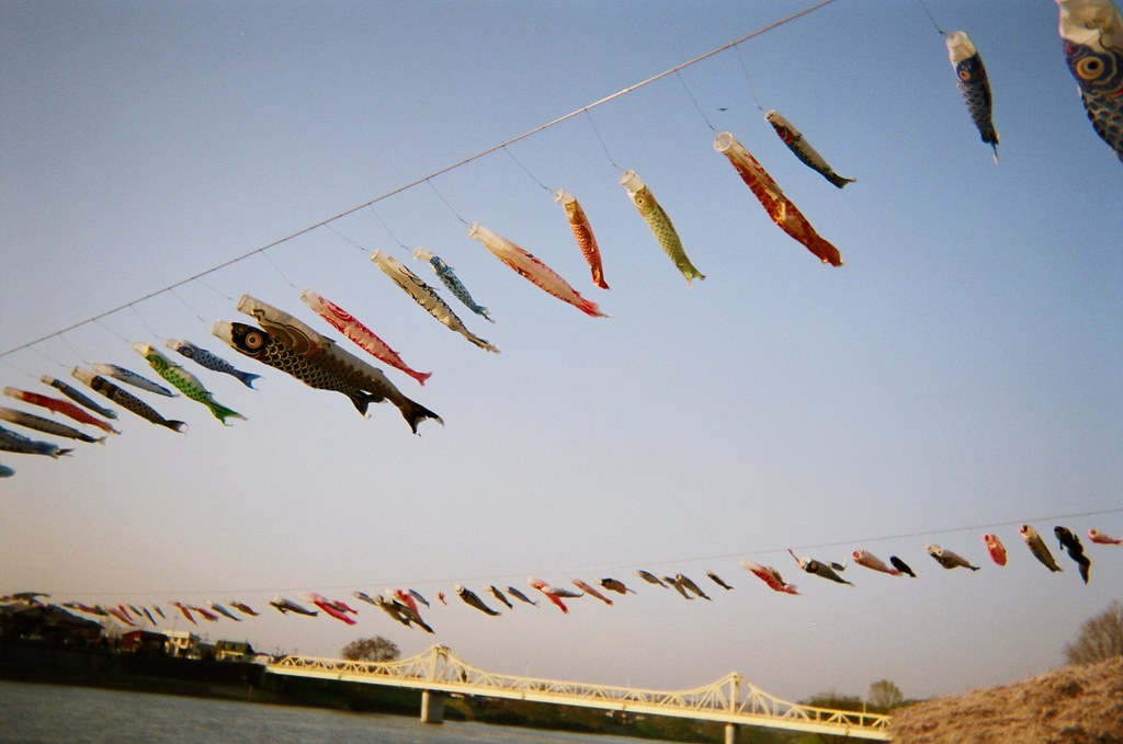 Koinobori, carp streamers flown annually during Children's Day