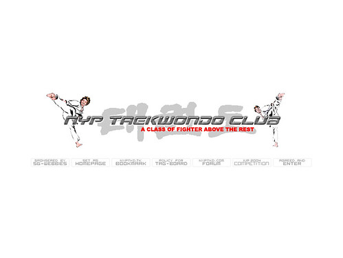 NYP Taekwondo Club Splash Page