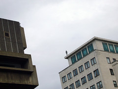 Why are there so many statues on the top of the buildings?