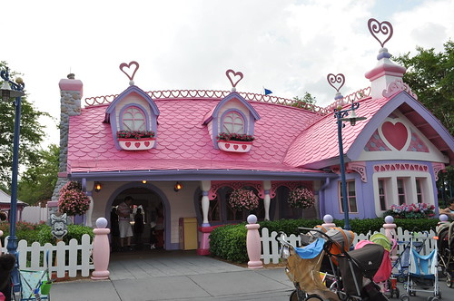 magic kingdom (116)