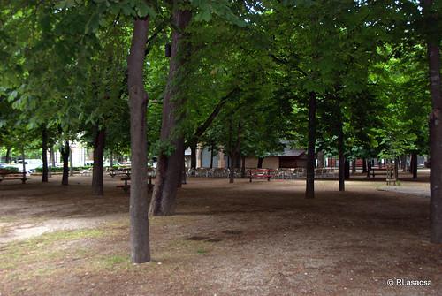 Árboles en los jardines del Bosquecillo