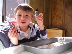 charlie flour animals