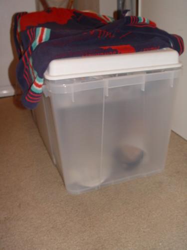 Rocket's bin.