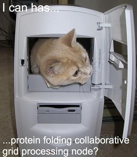 cat-in-computercomment1