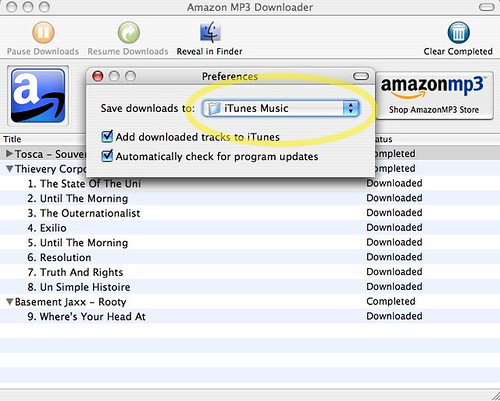Amazon MP3 Downloader - Preferences