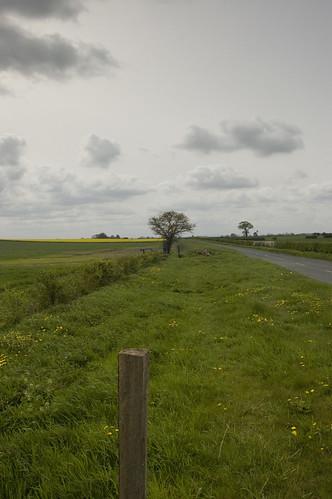Long Marston Moor