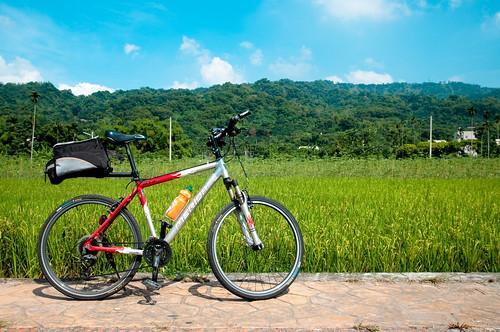 Sunday 90km Cycling