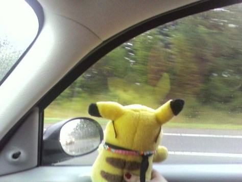 Pikachu greeting other cars