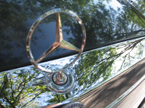 Mercedes Trees, Minneapolis, Minnesota, July 20, 2007, photo © 2007 by QuoinMonkey. All rights reserved.
