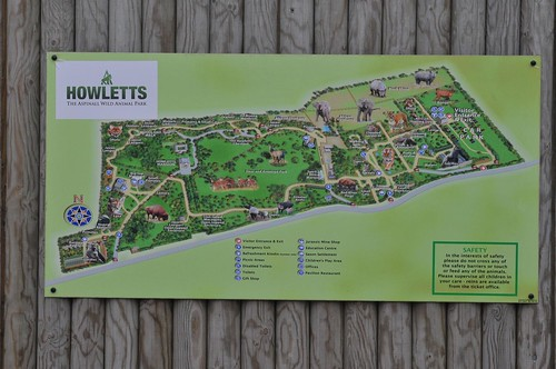 Zooplan des Howletts Wild Animal Park