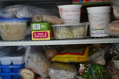 My freezer on 7/29/07