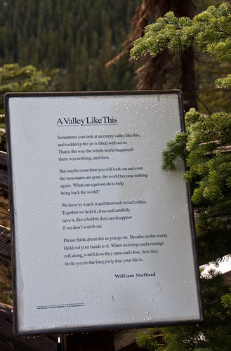 A short trip to Washington Pass