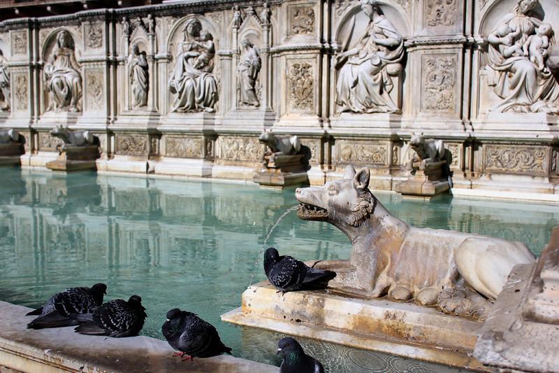 Fonte Gaia - Siena