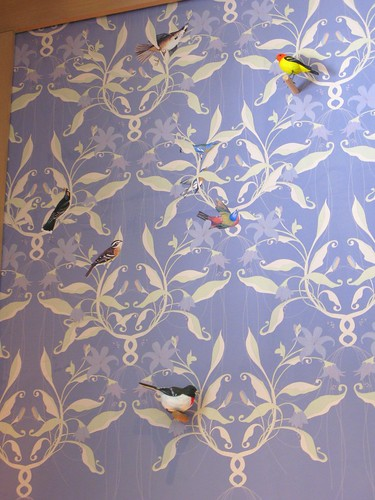 hurricane katrina wallpaper