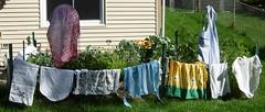 apron garden
