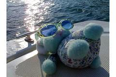 Choppy in barca