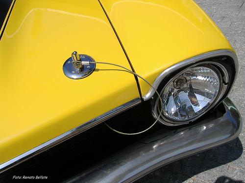 Amarelo-tarumã