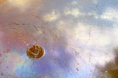 Oil Spill Splash