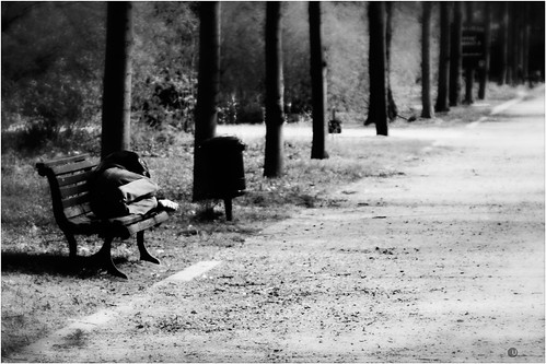 the-bench-bw