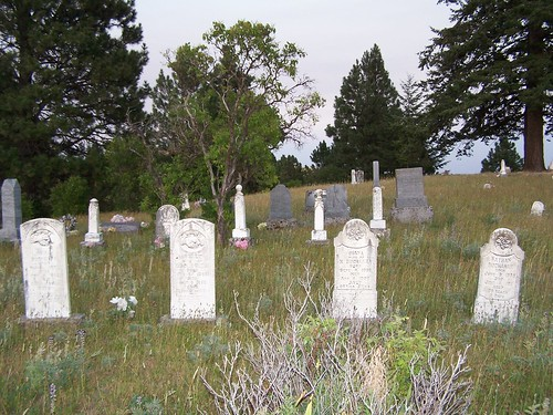 Buchanan Cemetary, July 2007