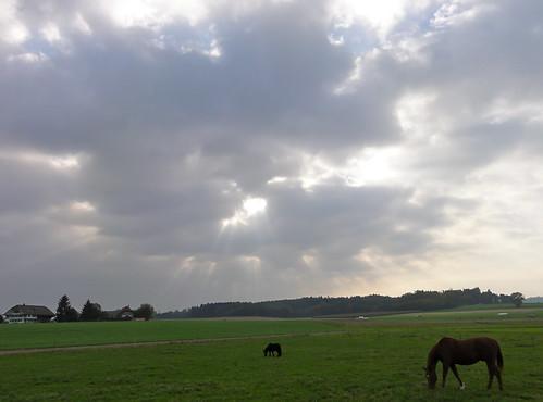 Göttliche Momente über der Pferdekoppel