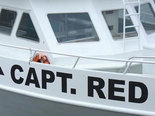 Capt. Red