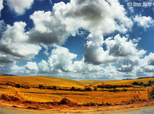 . Somewhere in Alagoas