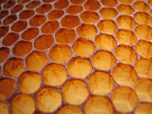 Honeycomb by justus.thane.