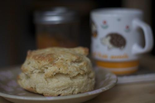 model biscuit