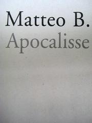Matteo B. Bianchi, Apocalisse a domicilio, Marsilio 2010; [responsabilità grafica non indicata], alla cop.: foto di Elif Sanem Karakoç, 2009; frontespizio (part.), 2