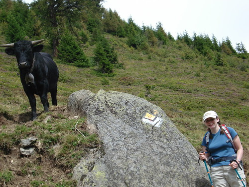 Cathy and Her Cow