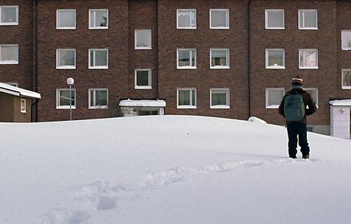 lroi snow