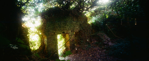 Cottage ruins (3 of 3)