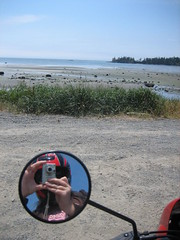 Portrait of the Traveler at False Bay