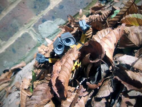 Day 72 - Leaf Pile