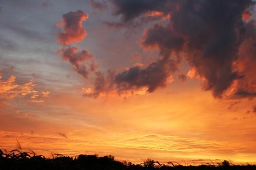 Sunrise - 7:01 a.m.