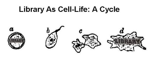 Library as cell-life: a cycle