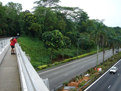 MacRitchie to Bukit Timah Briskwalk by inju, on Flickr