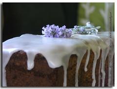 Lavendelkuchen
